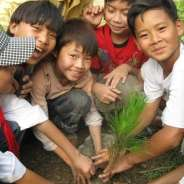 400 Trees for Vietnam