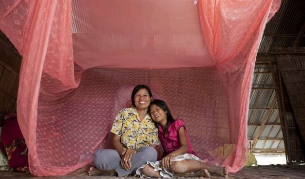 Mosquito nets for two famillies